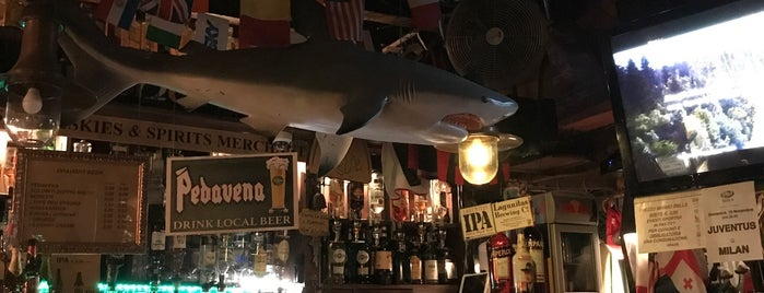 Inishark Pub is one of Venice.