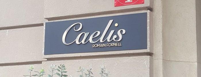 Caelis is one of Restaurantes destacables.