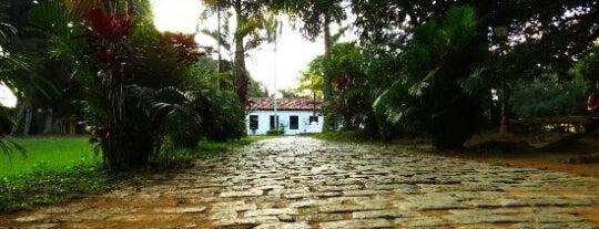 Museu Monteiro Lobato is one of Museus em SP.