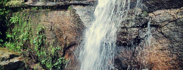 Cachoeira dos Primatas is one of Passeios.