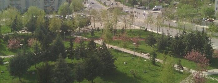 İsmail Hakkı Tonguç Parkı is one of Cenk 님이 좋아한 장소.