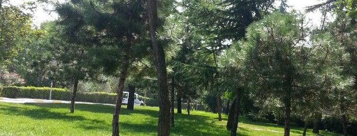 ataköy 3.kısım rio de janeiro caddesi is one of สถานที่ที่บันทึกไว้ของ Dilhan.