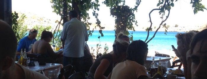 Dolphins Beach Bar & Restaurant is one of Locais salvos de Anil.