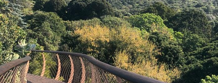 Kirstenbosch Botanical Gardens is one of Locais curtidos por Jadiânia.