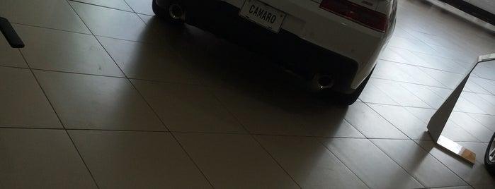 شركة التوكيلات العالميه للسيارات is one of Locais salvos de Jarallah.