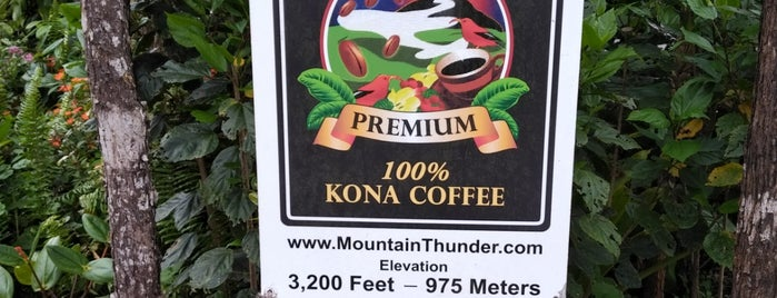 Mountain Thunder Coffee Plantation is one of Big Island.