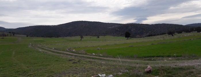 Ürünlüçiftliği is one of Kütahya | Merkez Köyler.