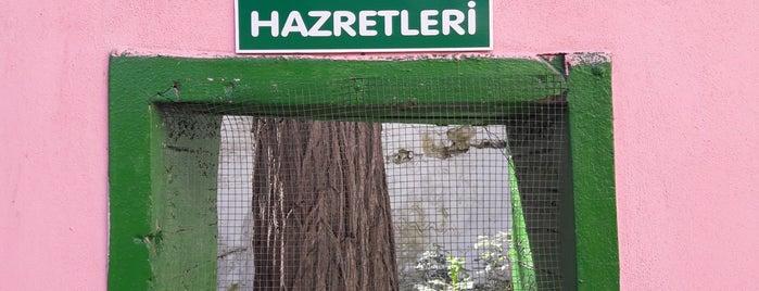 Şeyh Mahmure Hazretleri Türbesi is one of Osmangazi | Spiritüel Merkezler.