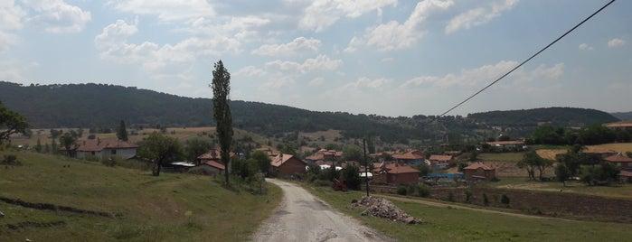 Sünnetyenice is one of Kütahya | Merkez Köyler.