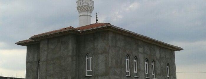 Osmanlı Camii is one of Kütahya | Spiritüel Merkezler.