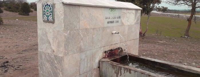Sakaçiftliği is one of Kütahya | Merkez Köyler.