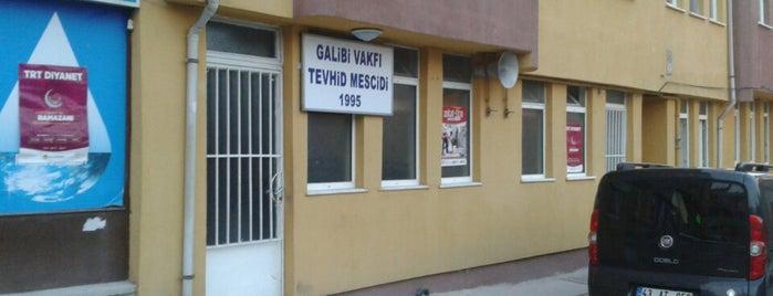 Galibi Vakfı Tehvid Mescidi is one of Kütahya | Spiritüel Merkezler.