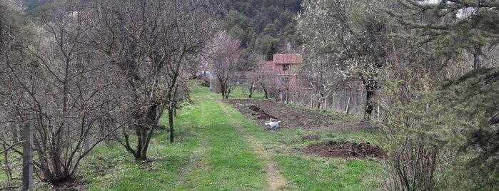Başören is one of Kütahya | Merkez Köyler.