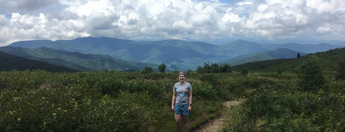Black Balsam Knob is one of Asheville, NC.