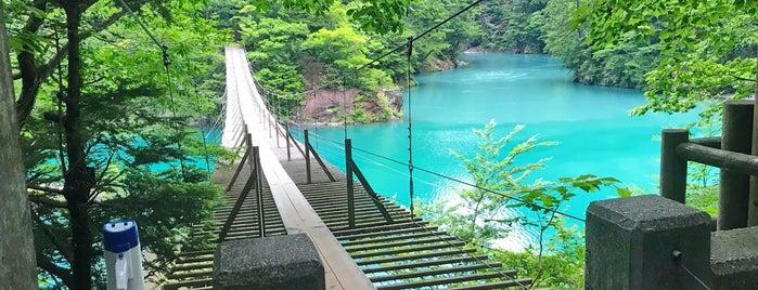 夢の吊橋 is one of アウトドア&景観スポット.
