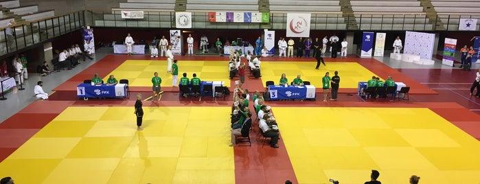 Institut du Judo is one of Paris During Gay Games X.