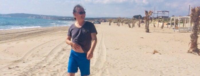 Dharma Beach Club is one of Lieux sauvegardés par Berkan.