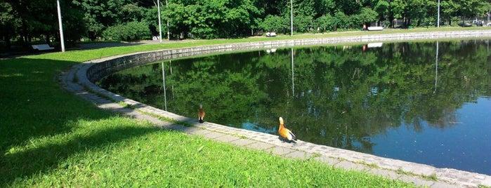 Мичуринский пруд is one of สถานที่ที่ Jano ถูกใจ.