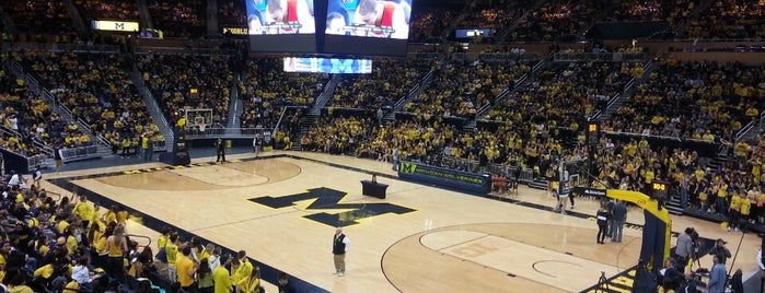 Crisler Center is one of Big Ten Men's Basketball Arenas.