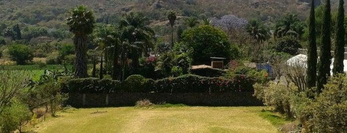 Casa Amador Hotel is one of สถานที่ที่ Gaby ถูกใจ.