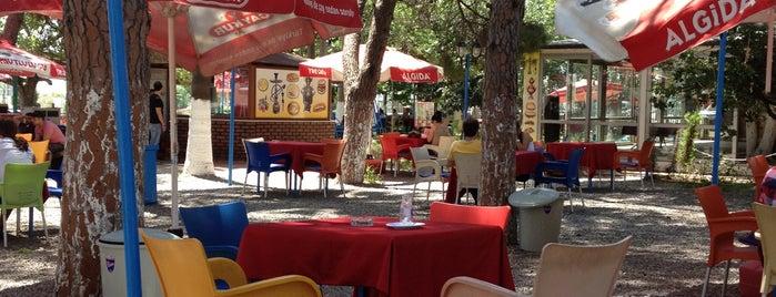 Barbaros Çay Bahçesi is one of Posti che sono piaciuti a Ayşe.