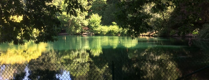 Laurelhurst Park is one of A long weekend guide to Portland.....