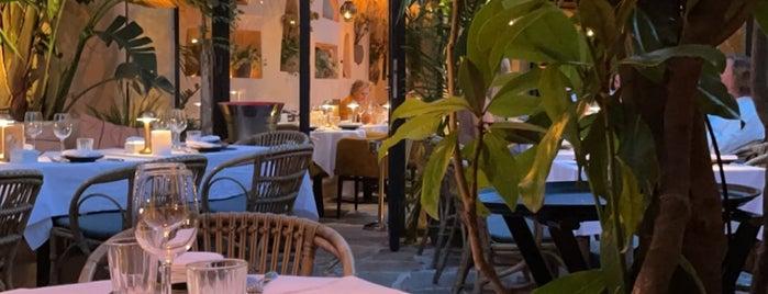 Salama is one of Saint-Tropez/ France.