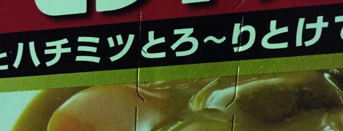 ザ・ビッグ エクスプレス 夏見橋店 is one of Lugares favoritos de Shigeo.