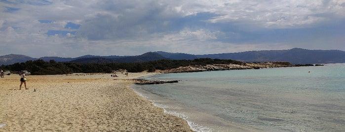 Alyko Beach is one of Naxos.