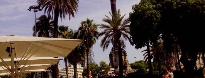 La Cava Universal is one of Barcelona.