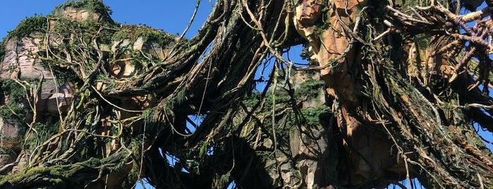 Pandora - The World of Avatar is one of Tempat yang Disukai Fernando Viana.