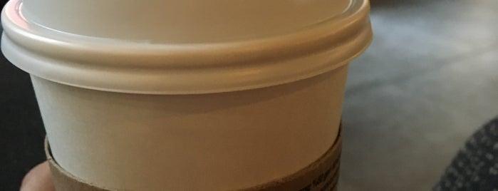 Starbucks is one of Ordu.