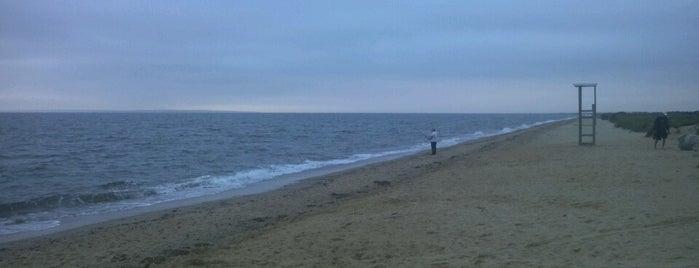 South Cape Beach is one of Orte, die Jeremy gefallen.