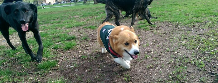 Juniper Valley Park Dog Run is one of My Good Dog NYC: NYC Dog Runs.
