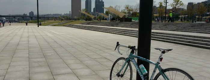 Yeouido Hangang Park is one of Good for your Seoul.