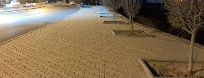 AlKhuzama Walking Area is one of Good for walking.