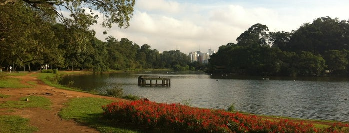 Trilha is one of Atrações do Parque Ibirapuera.