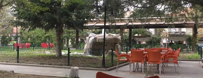 Sarısum Aile Çay Bahçesi is one of Adresler.