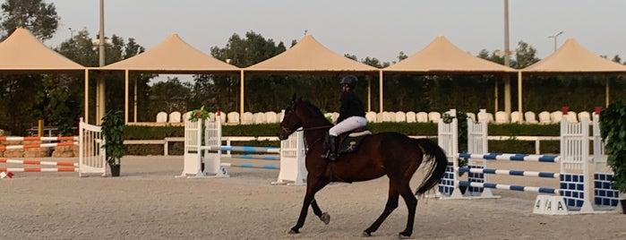 International equestrain school is one of Queenさんの保存済みスポット.