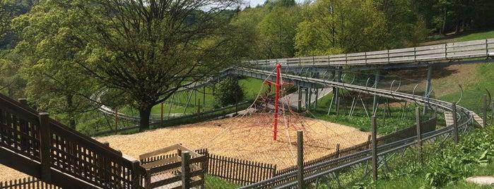 Odenwaldbob Sommerrodelbahn is one of Hotspots Hessen | Spiel & Spaß.