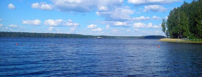 Пестовское водохранилище is one of Locais curtidos por Ksenia.