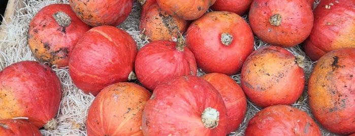 Rodinná farma Jamboz is one of Lugares favoritos de Miroslav.