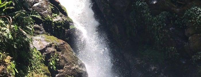 Cachoeira do Chá is one of Falta Conhecer.