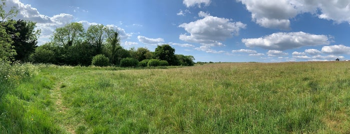 Farthing Downs is one of Natural London.