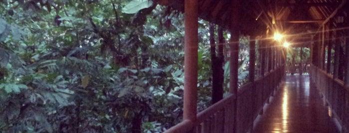 Hotel el Bambu is one of Heredia.