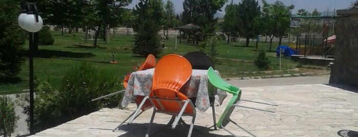 Sohbet Sofrası is one of สถานที่ที่ Said ถูกใจ.