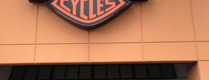 Harley-Davidson of Palm Beach is one of สถานที่ที่ Charles ถูกใจ.