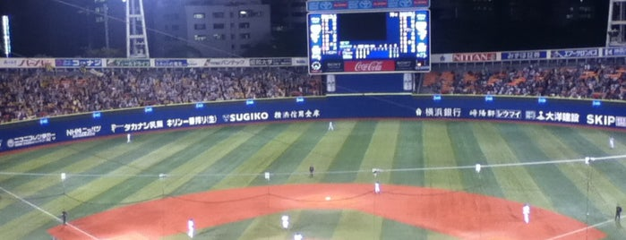 Yokohama Stadium is one of badger.