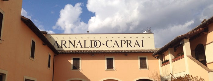 Arnaldo Caprai is one of Italy.