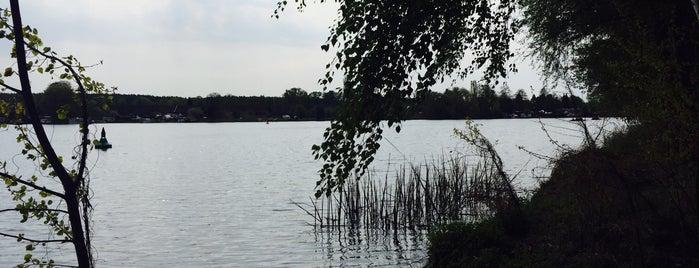 Joggingrunde is one of Lugares favoritos de Henri.